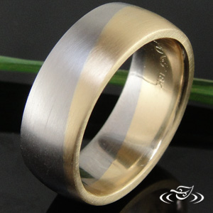 2-TONE TRANSITIONAL BAND
